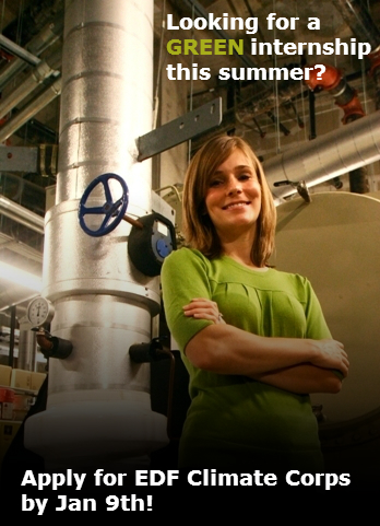 Looking for a GREEN internship this summer?